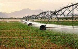رئیس سازمان جهاد کشاورزی خوزستان:تجهیز سیستم آبیاری نوین در اراضی کشاورزی خوزستان